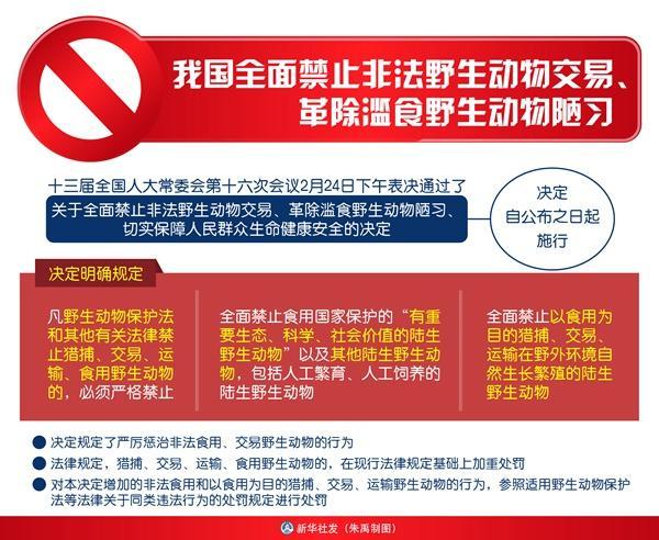 全面禁止非法野生动物交易 革除滥食野生动物陋习西宁环保公司