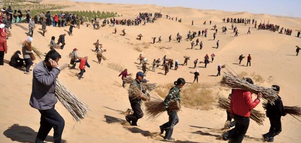 """库布其植树节将举行""""治沙碳中和 保护母亲河 """"纪念活动西宁水土保持代办公司"""