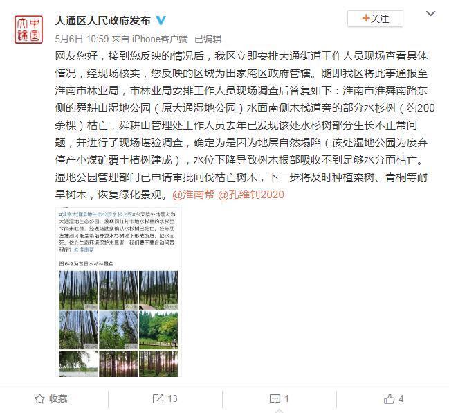 """淮南回应""""湿地公园水杉死亡"""":地层塌陷缺水枯亡西宁污水处理公司"""